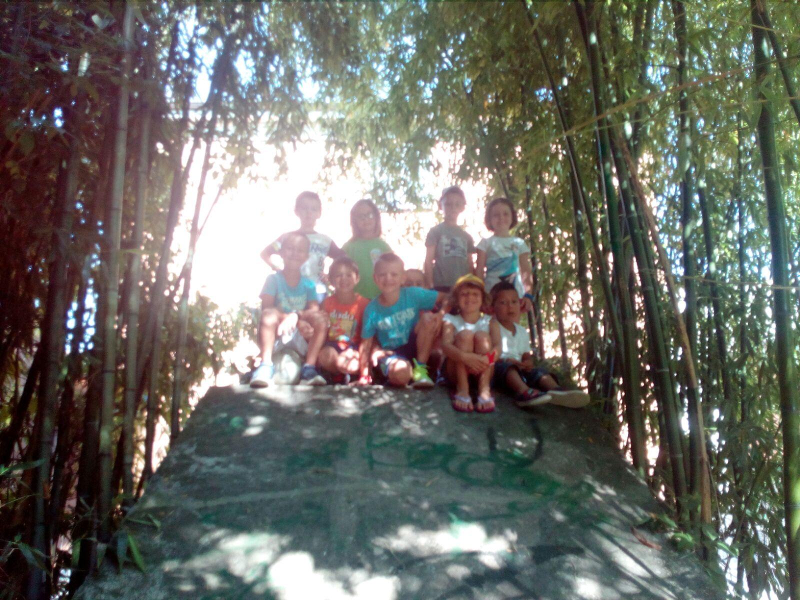 Parco12