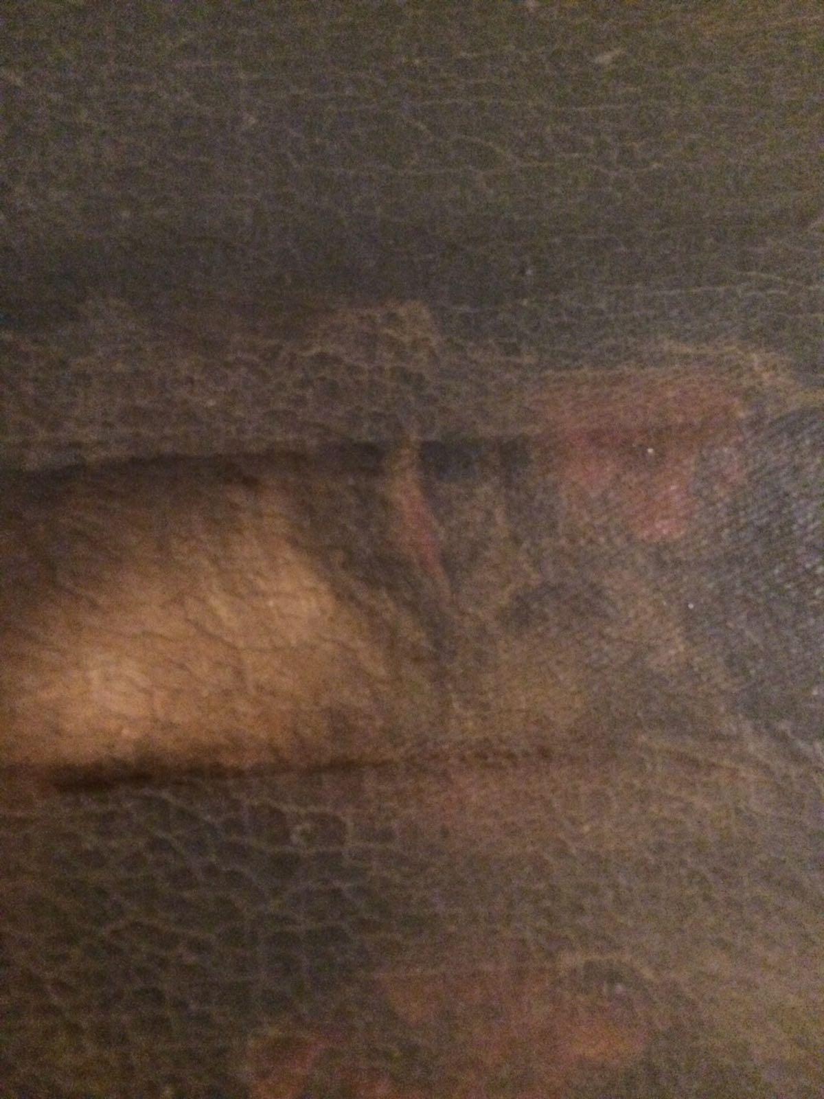 Dipinto Madonna con santi (6)