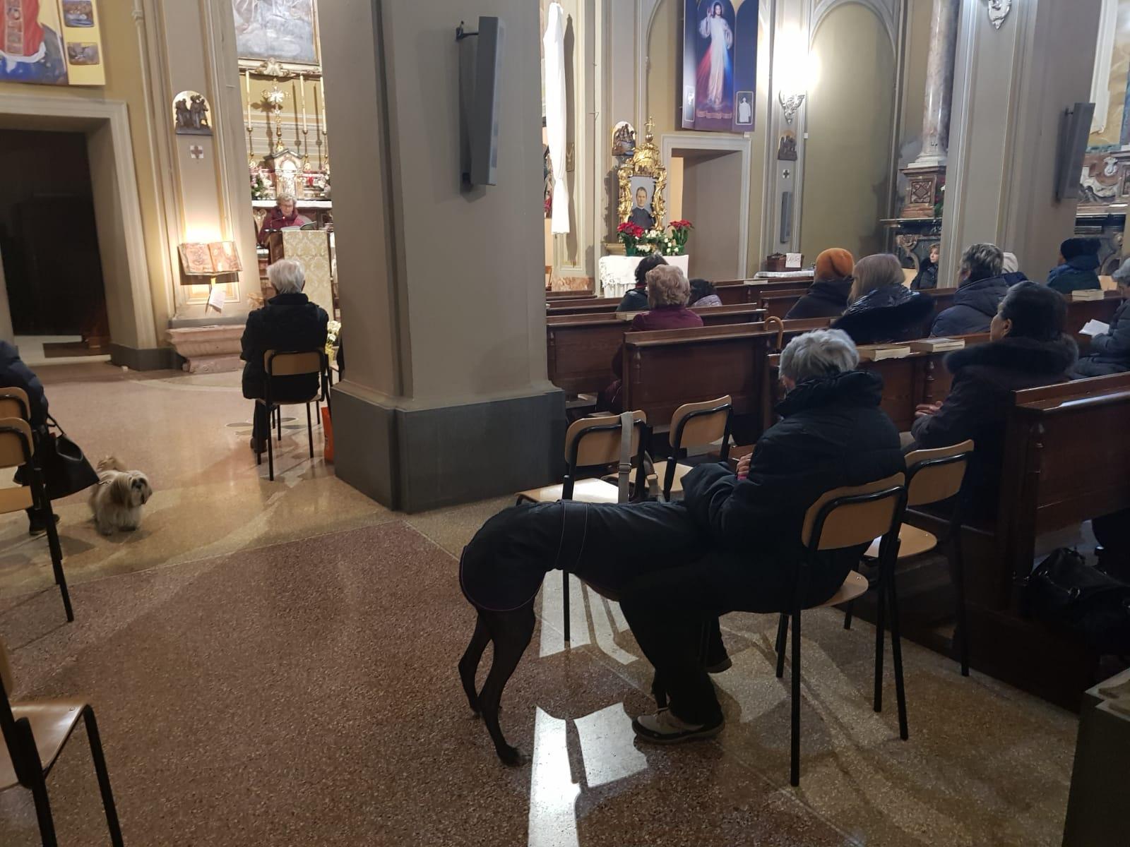 Festa S. Antonio Abate 2019 (12)