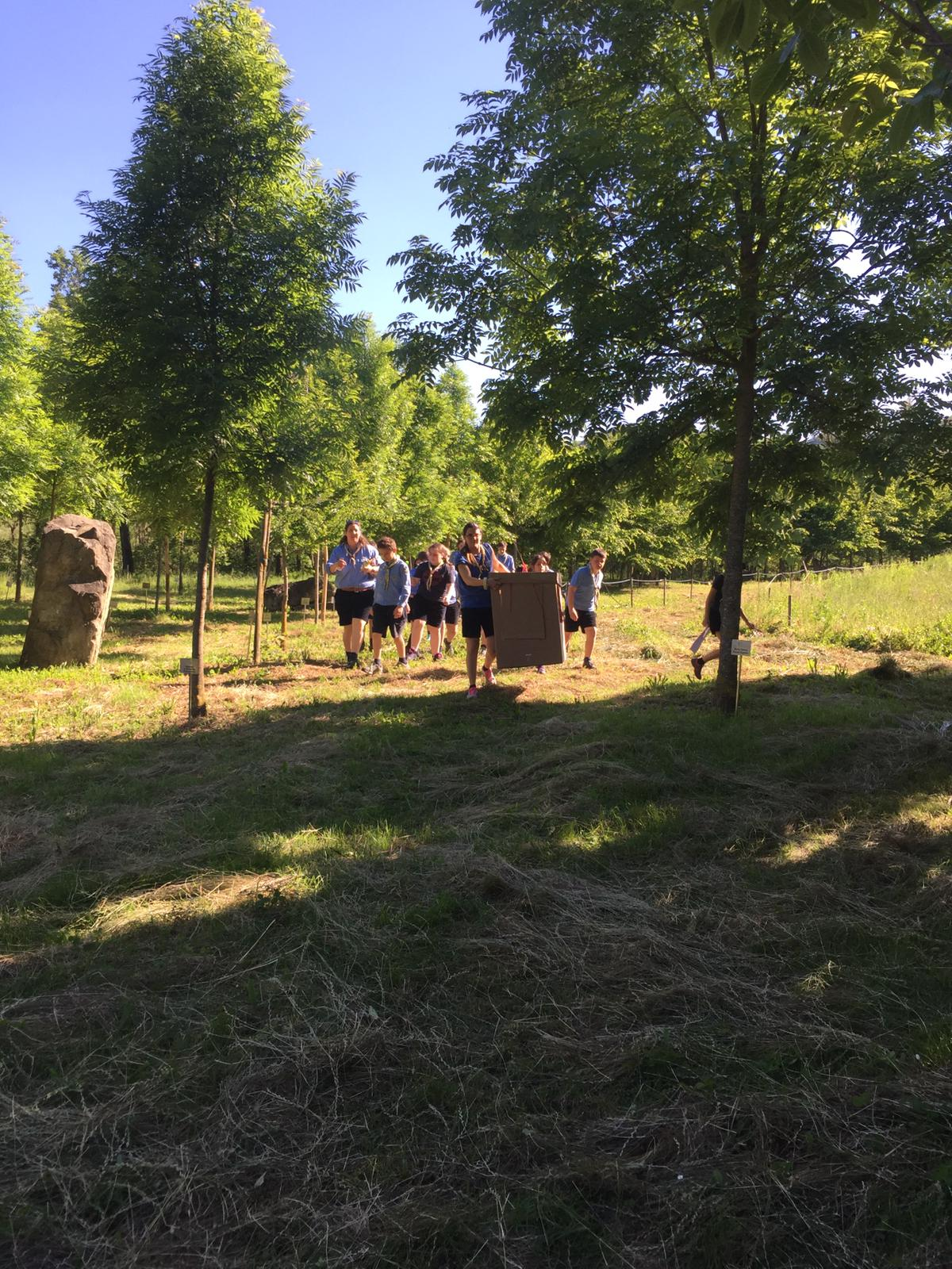 Uscita chiusura scout 2019 (28)